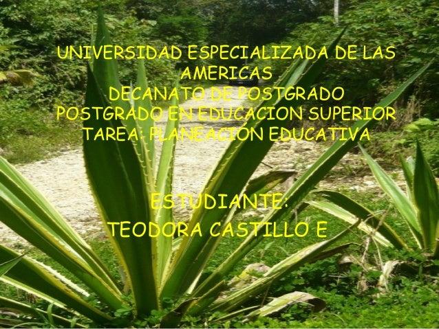 UNIVERSIDAD ESPECIALIZADA DE LAS            AMERICAS    DECANATO DE POSTGRADOPOSTGRADO EN EDUCACION SUPERIOR  TAREA: PLAN...