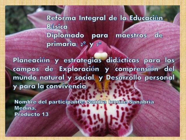 Un elemento fundamental en los procesos de enseñanza y aprendizaje es la planeación didáctica; ya que en ella se define el...
