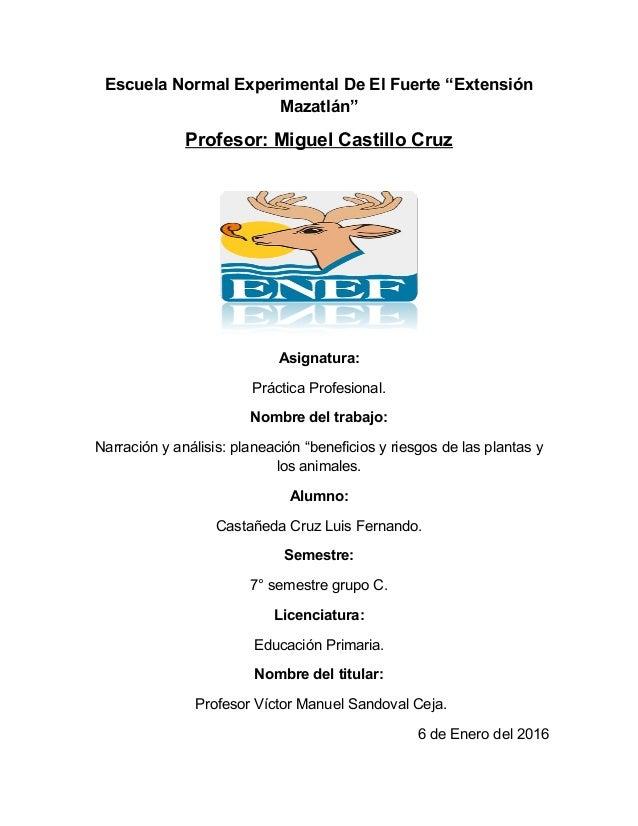 """Escuela Normal Experimental De El Fuerte """"Extensión Mazatlán"""" Profesor: Miguel Castillo Cruz Asignatura: Práctica Profesio..."""