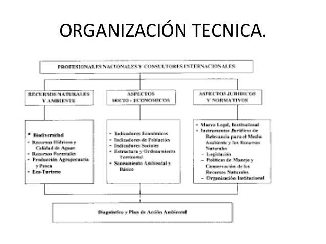 Planeacion Y Organizaci N Tecnica