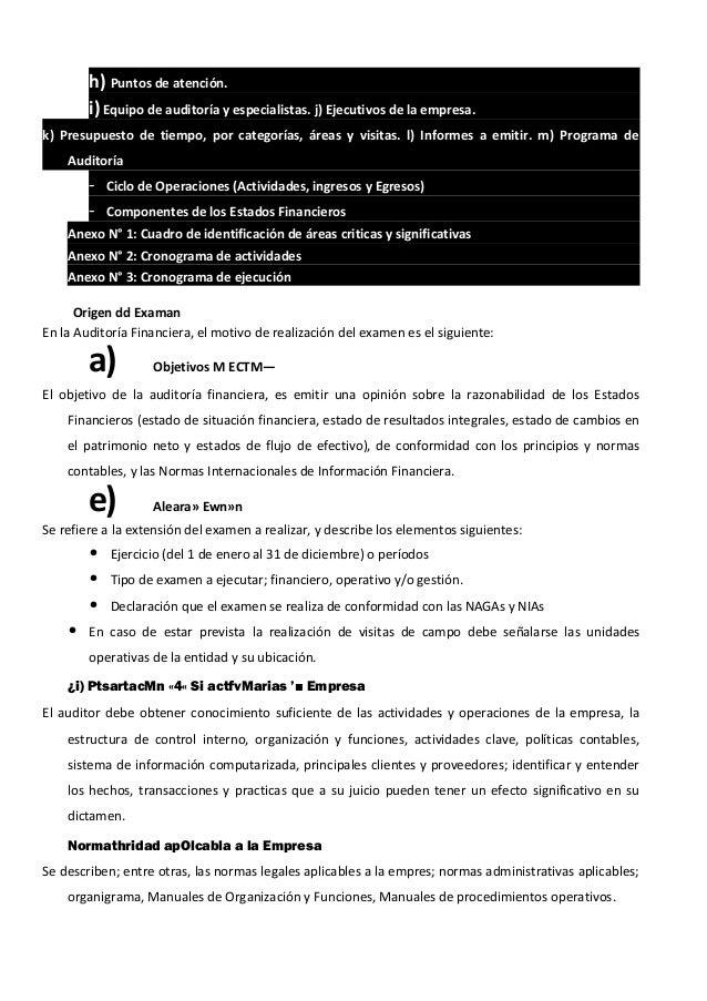 h) Puntos de atención. i) Equipo de auditoría y especialistas. j) Ejecutivos de la empresa. k) Presupuesto de tiempo, por ...