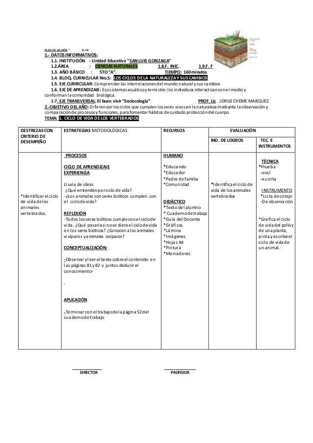 """PLAN DE LECCIÓN """" N.-19  1.- DATOS INFORMATIVOS:  1.1. INSTITUCIÓN : Unidad Educativa """"SAN LUIS GONZAGA""""  1.2.ÁREA : CIENC..."""