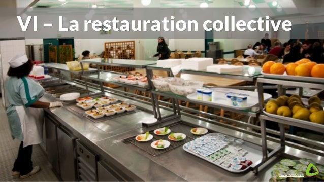 plan de la formation haccp - hygiène alimentaire - Formation Cuisine Collective