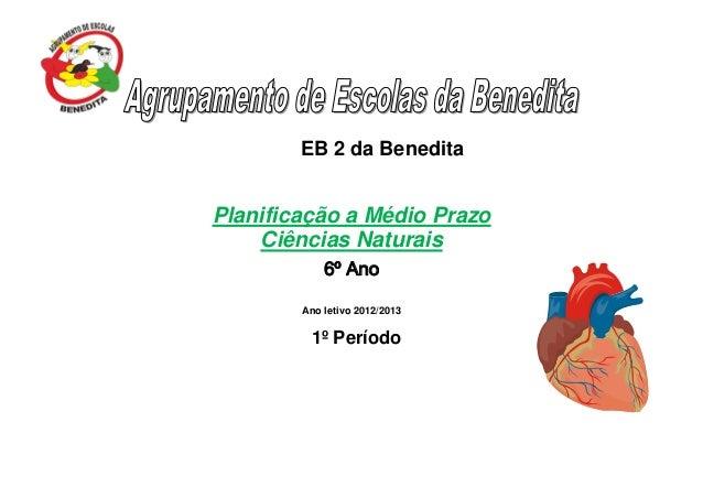 EB 2 da Benedita Planificação a Médio Prazo Ciências Naturais 6º Ano Ano letivo 2012/2013 1º Período