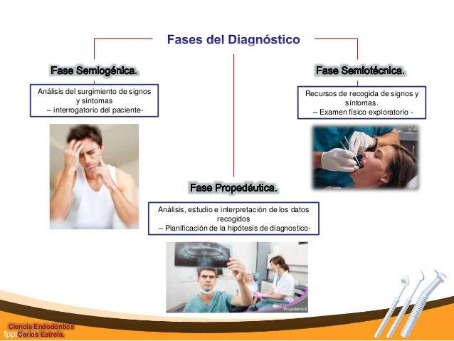 Endodoncia Carlos Estrela Pdf
