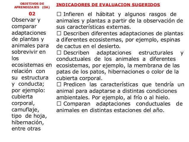 OBJETIVOS DE     INDICADORES DE EVALUACION SUGERIDOSAPRENDIZAJES (OA)      02        Infieren el hábitat y algunos rasgos...