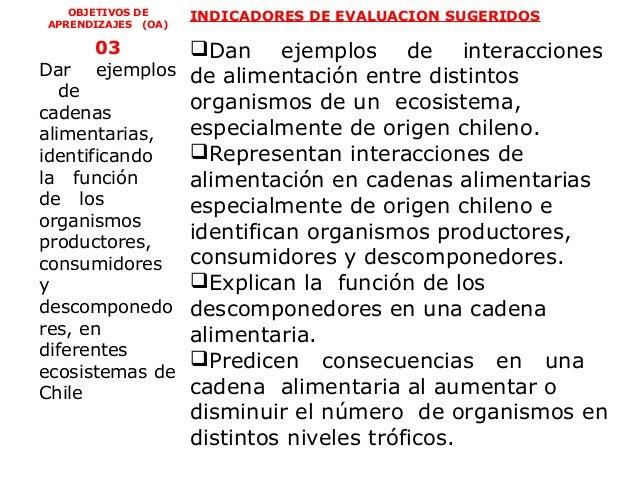 OBJETIVOS DE     INDICADORES DE EVALUACION SUGERIDOSAPRENDIZAJES (OA)      03       Dan ejemplos de interaccionesDar   ej...