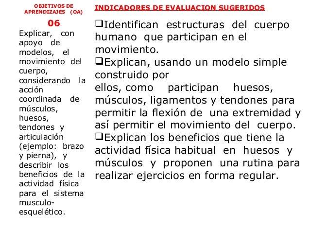 OBJETIVOS DE     INDICADORES DE EVALUACION SUGERIDOS APRENDIZAJES (OA)       06            Identifican estructuras del cu...