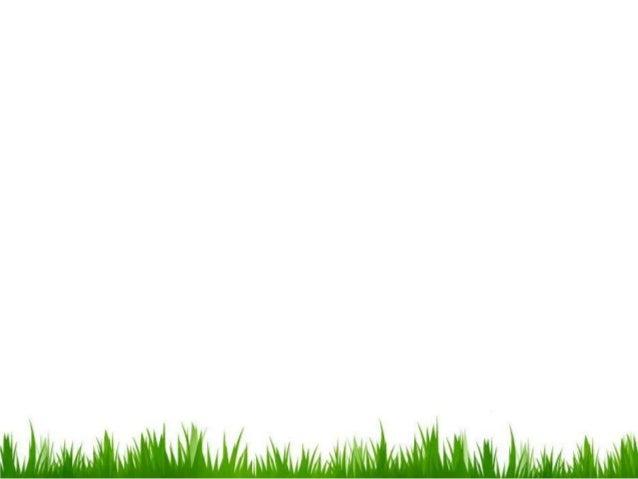 PONTIFICIA UNIVERSIDAD CATOLICA SEDE AMBATOIntroducción a lasTECNOLOGÍAS DE LAINFORMACIÓN YCOMUNICACIÓN