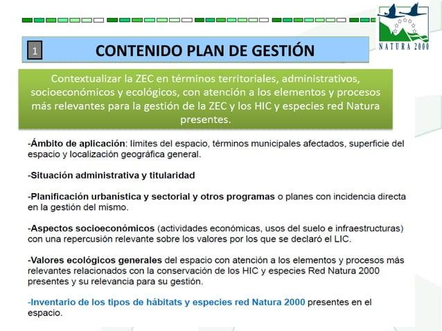 CONTENIDO PLAN DE GESTIÓNCONTENIDO PLAN DE GESTIÓN1