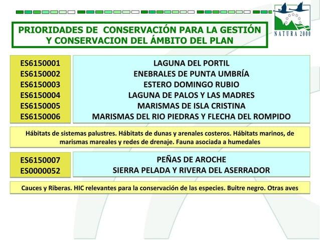 PRIORIDADES DE CONSERVACIÓN PARA LA GESTIÓN Y CONSERVACION DEL ÁMBITO DEL PLAN ES6150001 ES6150002 ES6150003 ES6150004 ES6...