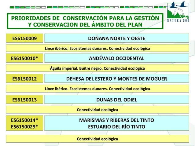 PRIORIDADES DE CONSERVACIÓN PARA LA GESTIÓN Y CONSERVACION DEL ÁMBITO DEL PLAN ES6150009ES6150009 DOÑANA NORTE Y OESTEDOÑA...