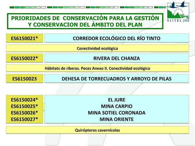 PRIORIDADES DE CONSERVACIÓN PARA LA GESTIÓN Y CONSERVACION DEL ÁMBITO DEL PLAN ES6150021*ES6150021* CORREDOR ECOLÓGICO DEL...