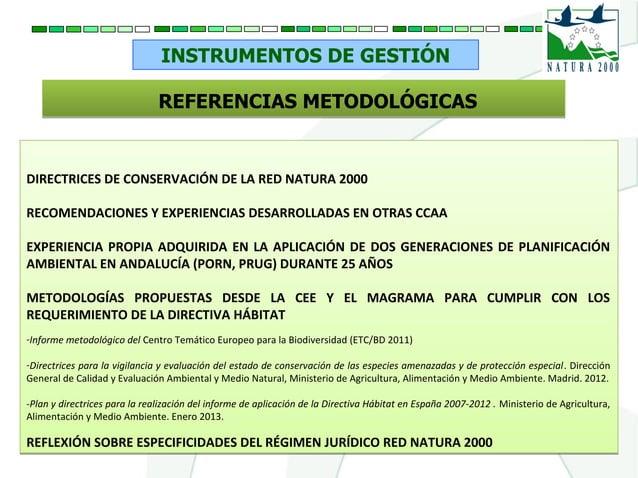 INSTRUMENTOS DE GESTIÓN REFERENCIAS METODOLÓGICASREFERENCIAS METODOLÓGICAS DIRECTRICES DE CONSERVACIÓN DE LA RED NATURA 20...