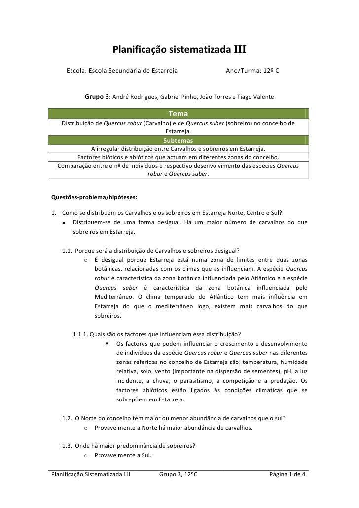 Planificação sistematizada III<br />Escola: Escola Secundária de Estarreja  Ano/Turma: 12º C<br />Grupo 3: André Rodrigues...