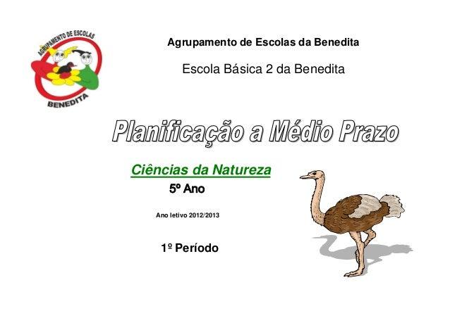 Agrupamento de Escolas da Benedita Escola Básica 2 da Benedita Ciências da Natureza 5º Ano Ano letivo 2012/2013 1º Período