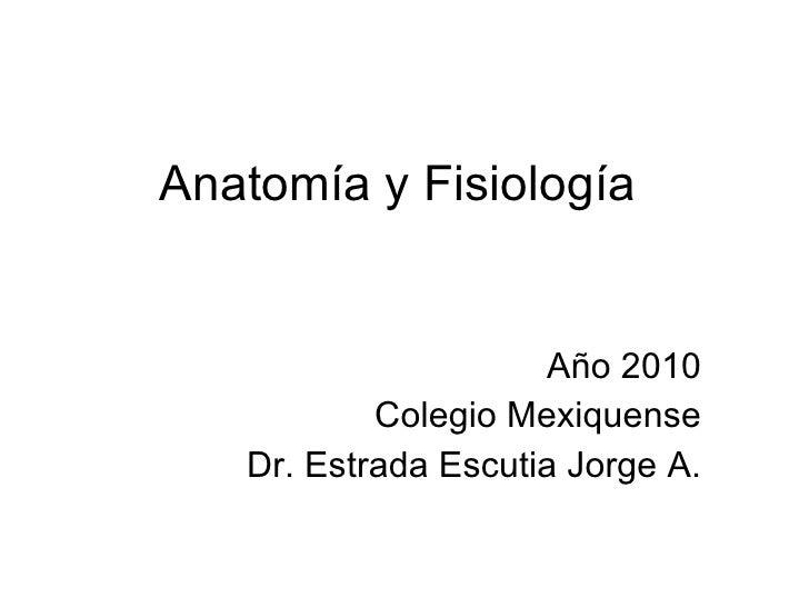 Anatomía y Fisiología Año 2010 Colegio Mexiquense Dr. Estrada Escutia Jorge A.