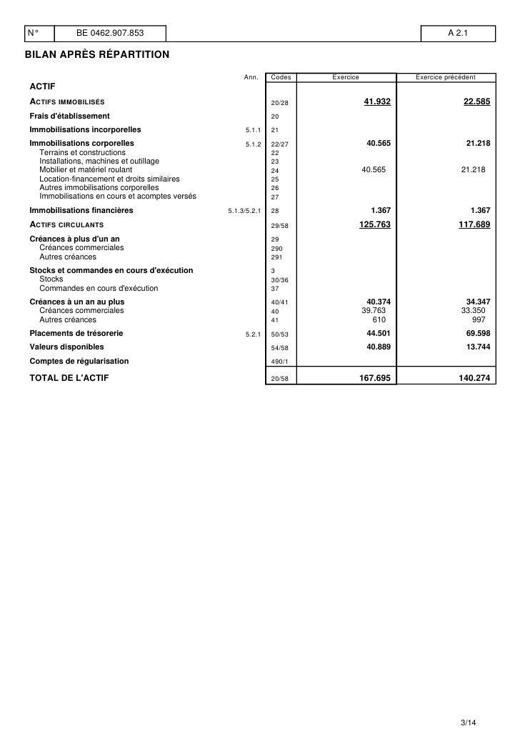 Planisoft comptes annuels et annexes au 31 decembre 2009 Slide 3