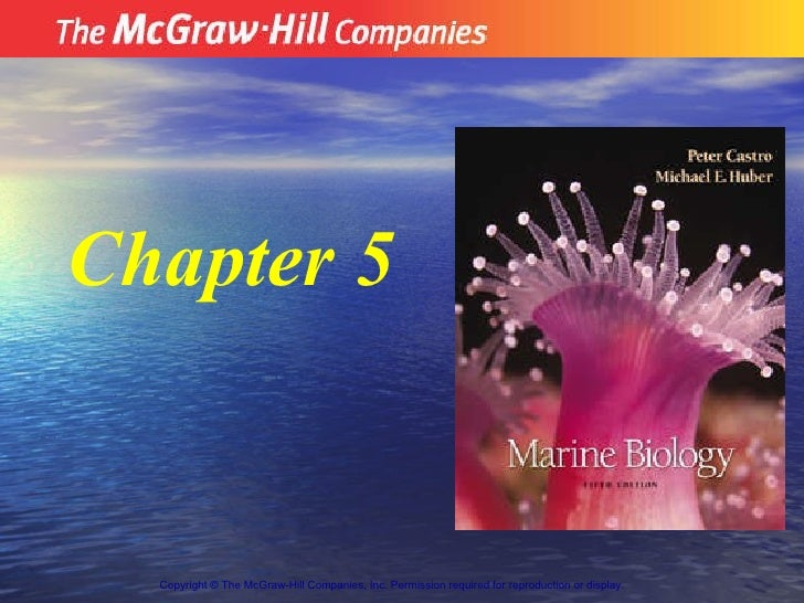 Copyright  ©  The McGraw-Hill Companies, Inc. Permission required for reproduction or display.   Chapter 5