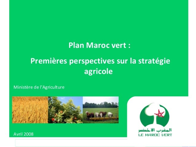 Plan Maroc vert :Premières perspectives sur la stratégieagricoleMinistère de l'AgricultureAvril 2008