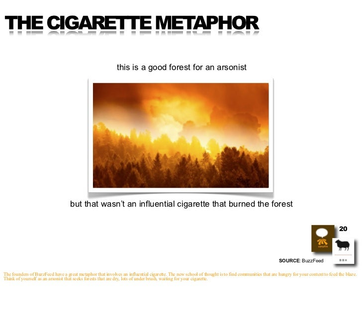 THE CIGARETTE METAPHOR                                                              this is a good forest for an arsonist ...