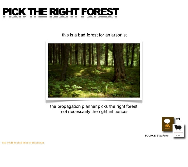 PICK THE RIGHT FOREST                                                        this is a bad forest for an arsonist         ...