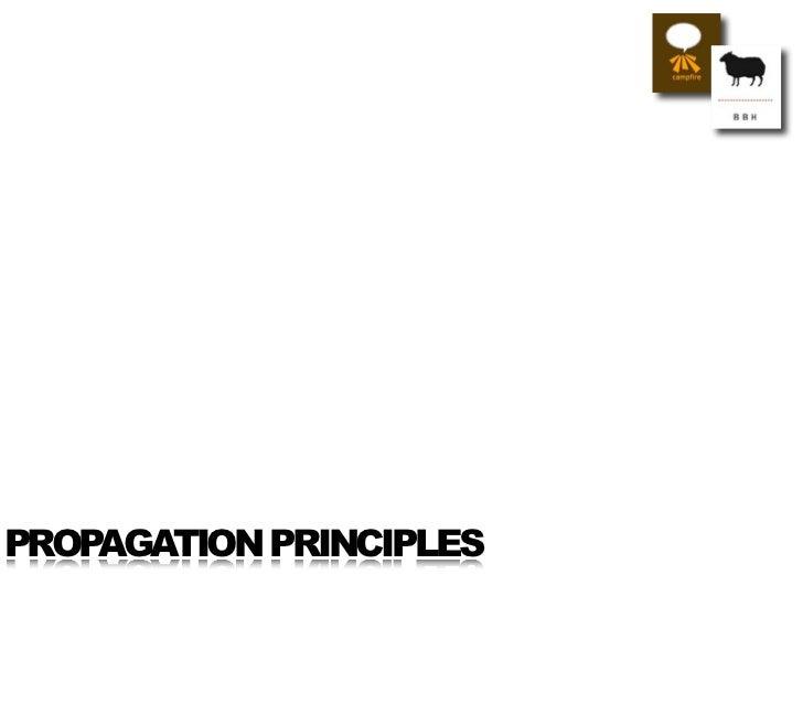 PROPAGATION PRINCIPLES