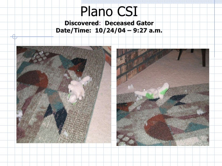 Plano CSI Discovered :  Deceased Gator Date/Time:  10/24/04 – 9:27 a.m.