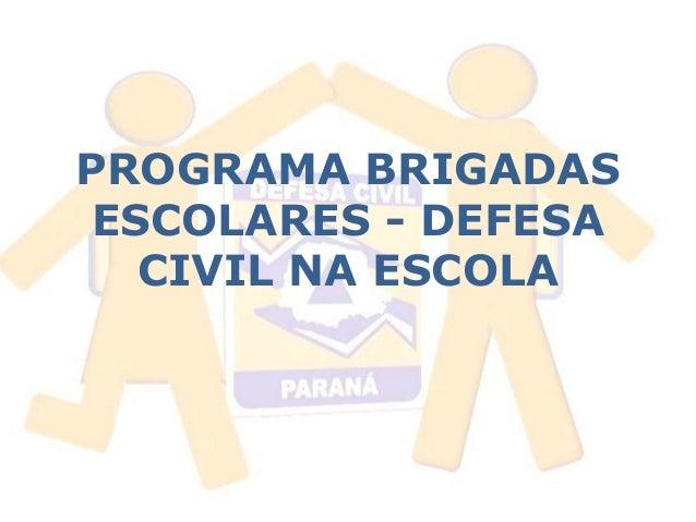 PROGRAMA BRIGADAS  ESCOLARES - DEFESA  CIVIL NA ESCOLA
