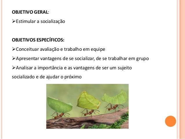 OBJETIVO GERAL: Estimular a socialização OBJETIVOS ESPECÍFICOS: Conceituar avaliação e trabalho em equipe Apresentar va...