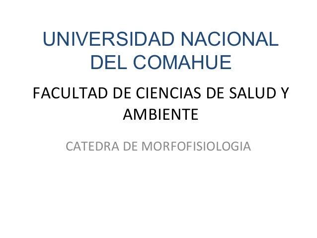 UNIVERSIDAD NACIONAL     DEL COMAHUEFACULTAD DE CIENCIAS DE SALUD Y          AMBIENTE   CATEDRA DE MORFOFISIOLOGIA