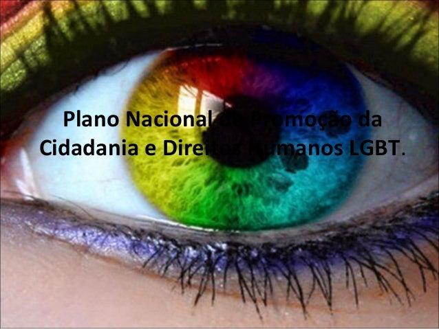 Plano Nacional de Promoção da Cidadania e Direitos Humanos LGBT.
