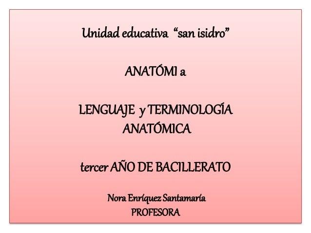 """Unidad educativa """"san isidro""""  ANATÓMI a  LENGUAJE y TERMINOLOGÍA  ANATÓMICA  tercer AÑO DE BACILLERATO  Nora Enríquez San..."""