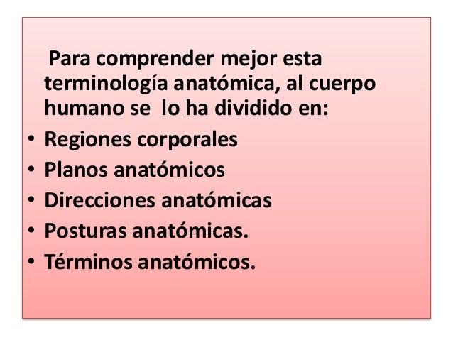 Planos anatómicos Slide 3