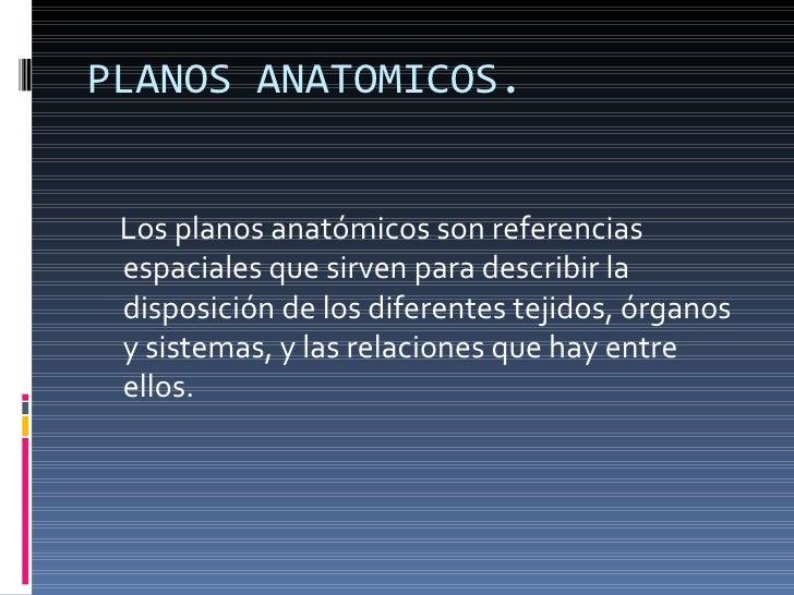 Planos Anátomicos TR2 Slide 2