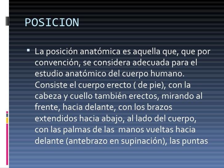 Planos Anátomicos TR2 Slide 3