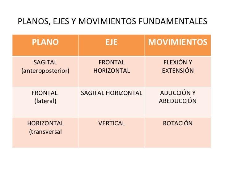 PLANOS, EJES Y MOVIMIENTOS FUNDAMENTALES PLANO EJE MOVIMIENTOS SAGITAL (anteroposterior) FRONTAL HORIZONTAL FLEXIÓN Y EXTE...