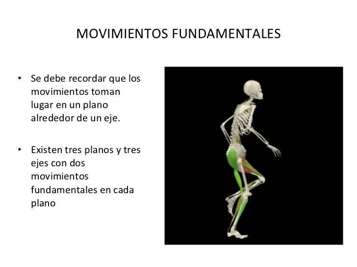 MOVIMIENTOS FUNDAMENTALES <ul><li>Se debe recordar que los movimientos toman lugar en un plano alrededor de un eje. </li><...