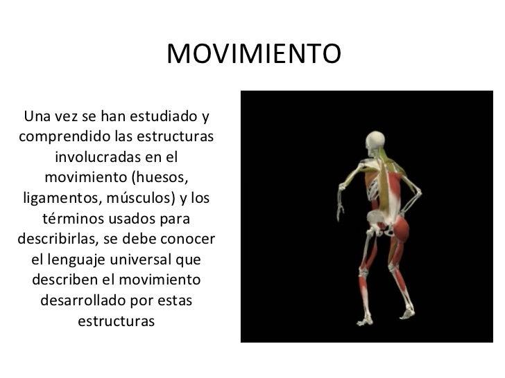 Planos y ejes del cuerpo humano Slide 2
