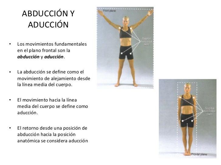 ABDUCCIÓN Y ADUCCIÓN <ul><li>Los movimientos fundamentales en el plano frontal son la  abducción  y  aducción . </li></ul>...