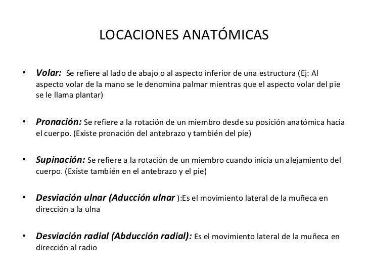 LOCACIONES ANATÓMICAS <ul><li>Volar:  Se refiere al lado de abajo o al aspecto inferior de una estructura (Ej: Al aspecto ...