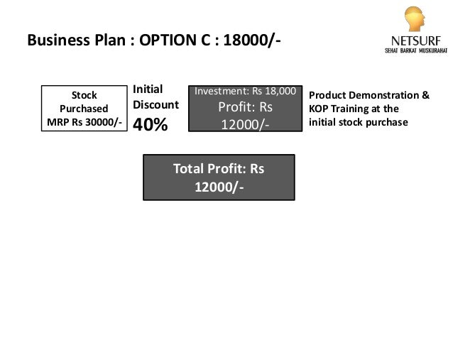 netsurf business plan ppt