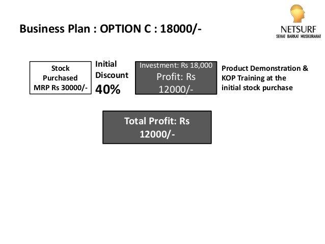netsurf business plan ppt