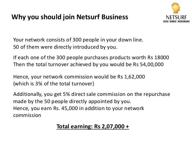netsurf business plan