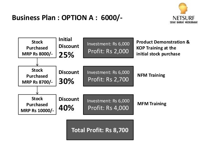 netsurf business plan