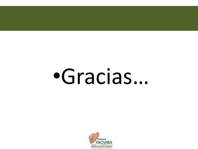 000•Gracias…