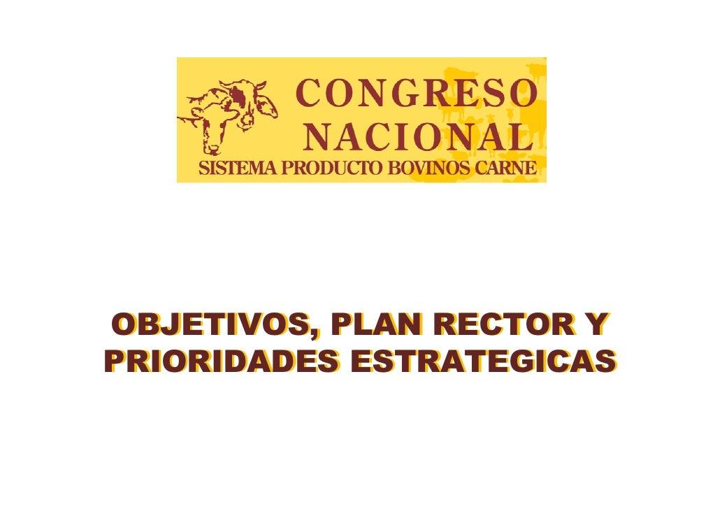 OBJETIVOS, PLAN RECTOR Y PRIORIDADES ESTRATEGICAS