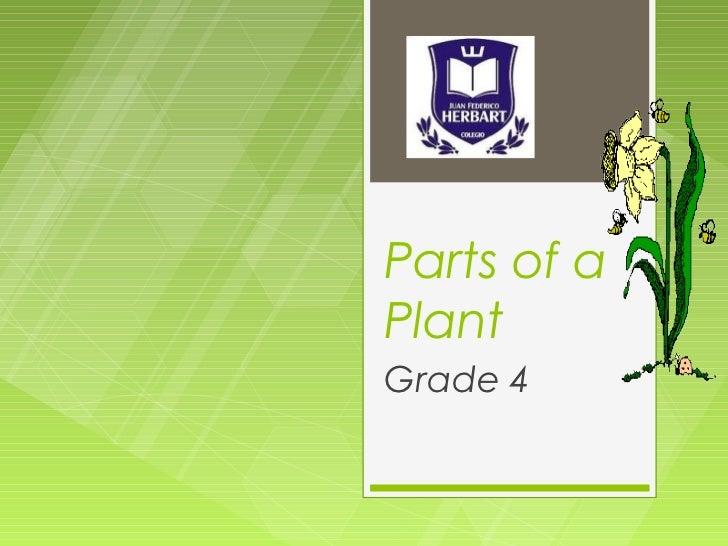 Parts of aPlantGrade 4