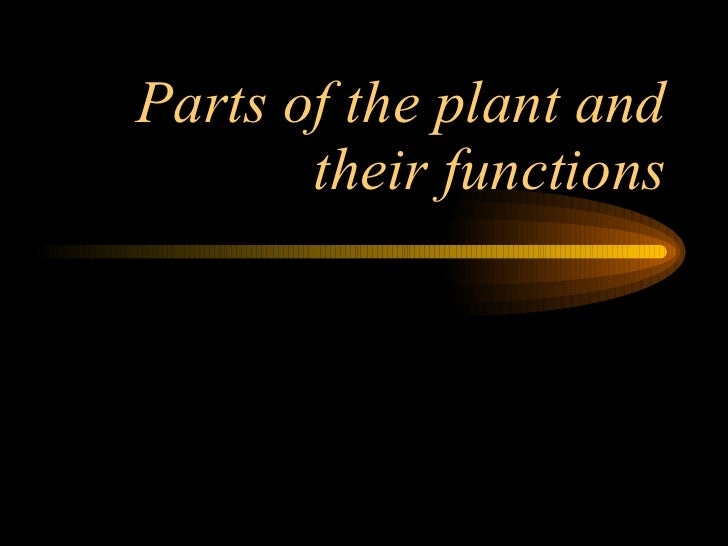 Parts of the plant and their functions
