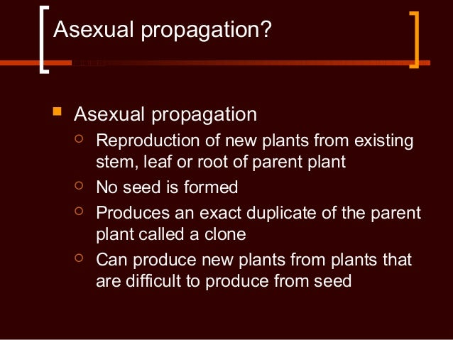 Inarching asexual propagation prohibited